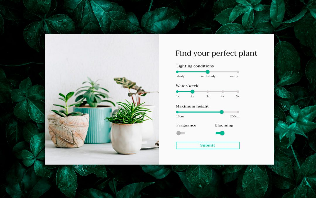 Calculator design for plant webshop – VIDEO