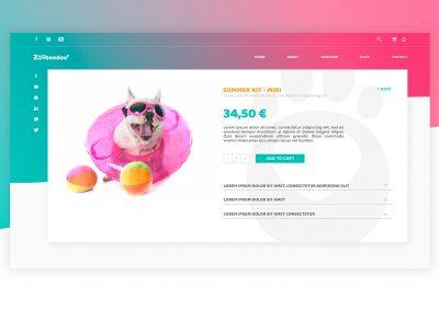 ZooBeeDoo pet accessories - logo and webdesign